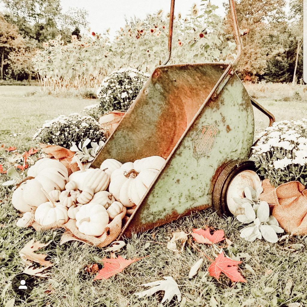 vintage garden antique