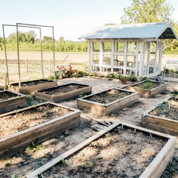 First Ever Garden Tour | Diana Marie Home