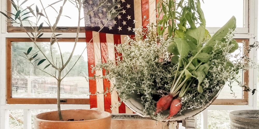 Garden Tour: Week 4 | Diana Marie Home