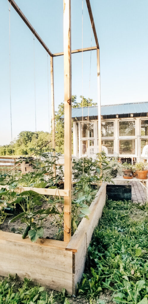 Cottage Greenhouse Garden | Diana Marie Home