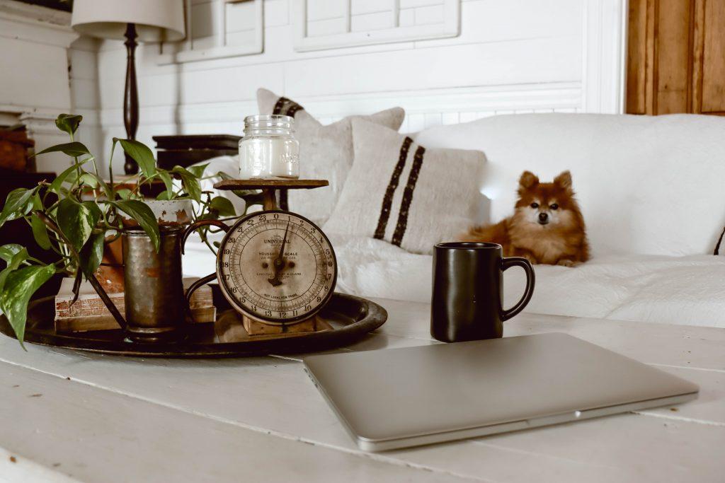 Saving time and money using Shoptagr