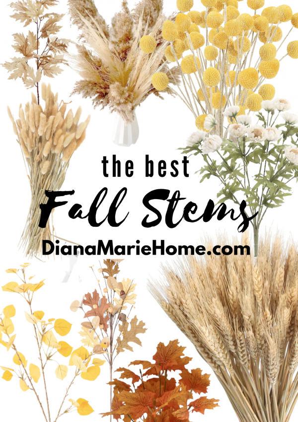 The Best Fall Stems & Flowers